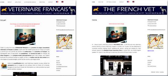 Vétérinaire Français à Londres